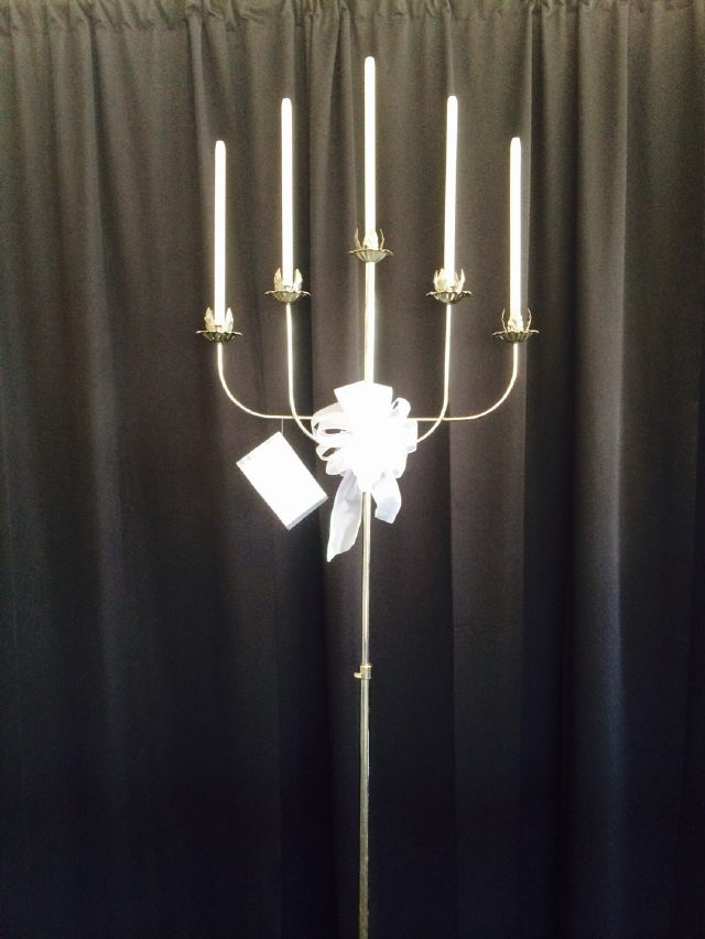 Where to find SILVER 5 LITE FAN CANDELABRA in Raleigh