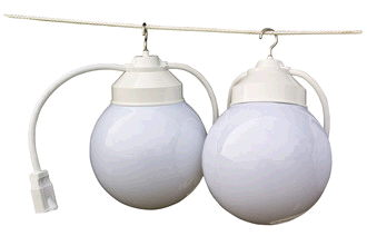 Where to find GLOBE LIGHTS STRAND OF 8, 50 in Raleigh