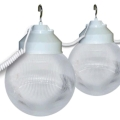 Where to rent CLEAR GLOBE LIGHTS, STRAND OF 8, 28 in Raleigh NC