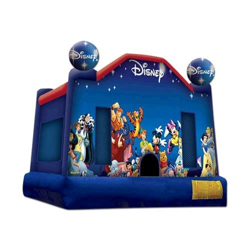 Where to find WORLD OF DISNEY 13  X 13  BOUNCER in Raleigh