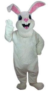 Where to find BUNNY SUIT  LARGE in Raleigh