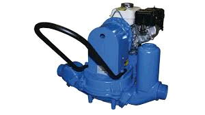 Where to find 2  DIAPHRAGM PUMP GAS in Raleigh
